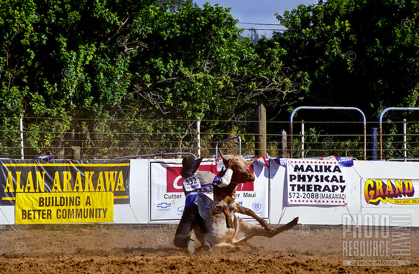 A man comptes in the annual Fourth of July Makawao Rodeo. Hawaii's largest rodeo, it is held in the upcountry town of Makawao. Maui's cowboy or paniolo town got its start in the early 1800s as a support community for the upcountry cattle ranches.