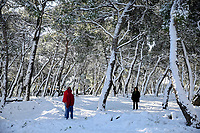 Pictured: People walk in a park in the Maroussi area of Athens, Greece. Tuesday 08 January 2018<br /> Re: Heavy snowfall has affected most parts of Greece.