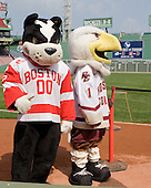 Rhett (Boston University - mascot), Baldwin (Boston College - mascot) - A press conference hosted by the Hockey East Association, the Boston Red Sox and Fenway Sports Group was held on Thursday, August 20, 2009, at Fenway Park in Boston, MA, to announce that there would be a Hockey East college hockey doubleheader on Friday, January 8, 2010, held on the ice that will be used for the January 1, 2010 NHL Winter Classic.  The afternoon (4:00 pm EST) match will be between the Northeastern University Huskies (home team) and University of New Hampshire Wildcats women's teams while the evening (7:30 pm EST) match will be between the Boston College Eagles (home team) and the Boston University Terriers men's teams.