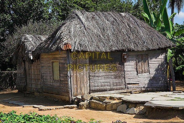 House constructed from wood with a palm tree leaf roof, Camera Village, near Santiago de Cuba, Cuba