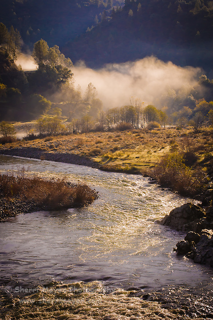 Early morning fog over the confluence of the north and middle forks of the American River, Auburn, California