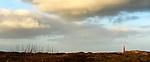 SCHIERMONNIKOOG - Vuurtoren, duinen, Waddeneiland Schiermonnikoog.  ANP COPYRIGHT KOEN SUYK