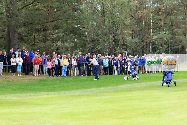 Sam Burns (USA) on the 16th hole during Day 2 Singles for the Junior Ryder Cup 2014 at Blairgowrie Golf Club on Tuesday 23rd September 2014.<br /> Picture:  Thos Caffrey / www.golffile.ie