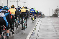 peloton riding through the heavy rain<br /> <br /> 1st Dwars door West-Vlaanderen 2017 (1.1)
