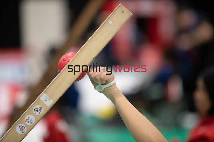 World Boccia Championships 2018<br /> Exhibition Centre Liverpool<br /> 11.08.18<br /> &copy;Steve Pope<br /> Sportingwales