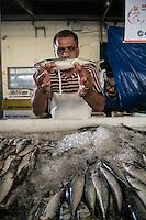 SAO PAULO, SP, 27 DE MARÇO DE 2013. OITAVA SANTA FEIRA DO PEIXE NA CEAGESP. Vendedor mostra sardinha a venda na oitava santa feira do peixe que acontece no Patio do Pescado da  Ceagesp.  Esta feira acontece antes das festividades da semana santa e os clientes podem comprar vários tipos de peixes com preço de atacado. A feira acontece ate o dia 28 de março a partir das 14 horas. FOTO ADRIANA SPACA/BRAZIL PHOTO PRESS