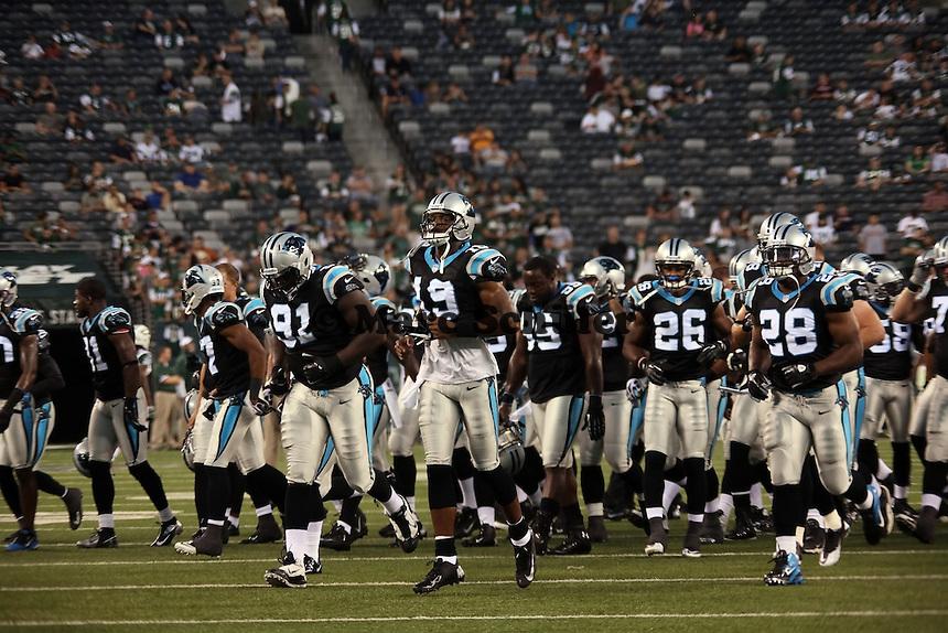 Panthers laufen ein