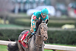 HOT SPRINGS, AR - FEBRUARY 19: My Boy Jack  ,with jockey Kent Desormeaux wins the Southwest Stakes at Oaklawn Park on February 19, 2018 in Hot Springs, Arkansas. (Photo by Ted McClenning/Eclipse Sportswire/Getty Images)
