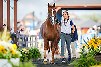 ESP-Beatriz Ferrer-Salat presents Delgado during the Horse Inspection for Dressage. 2018 FEI World Equestrian Games Tryon. Tuesday 11 September. Copyright Photo: Libby Law Photography