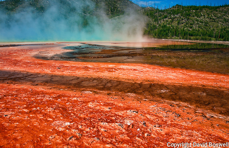 Grand Prismatic Spring and it's bacterial mats, Midway Geyser Basin in Yellowstone National Park