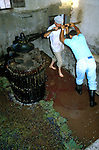 Crushing grapes in a wine press in the south of Tenerife. Tenerife, Canary Islands, Spain