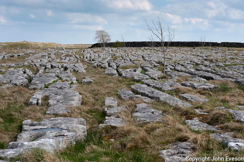 Limestone pavement, Malham, North Yorkshire. A limestone pavement is a natural karst landform consisting of a flat, incised surface of exposed limestone. It can be subject to theft as it can be sold as rockery stone.