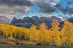 Uncompahgre National Forest, Colorado: Cliffs of the Cimarron range and fall aspen groves under passing rain clouds