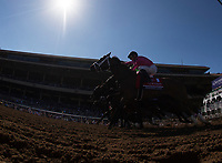 DEL MAR, CA - NOVEMBER 04: The field breaks from the gate during the 14 Hands Winery Breeders' Cup race on Day 2 of the 2017 Breeders' Cup World Championships at Del Mar Racing Club on November 4, 2017 in Del Mar, California. (Photo by Alex Evers/Eclipse Sportswire/Breeders Cup)