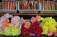 flower shop in San Francisco Chinatown
