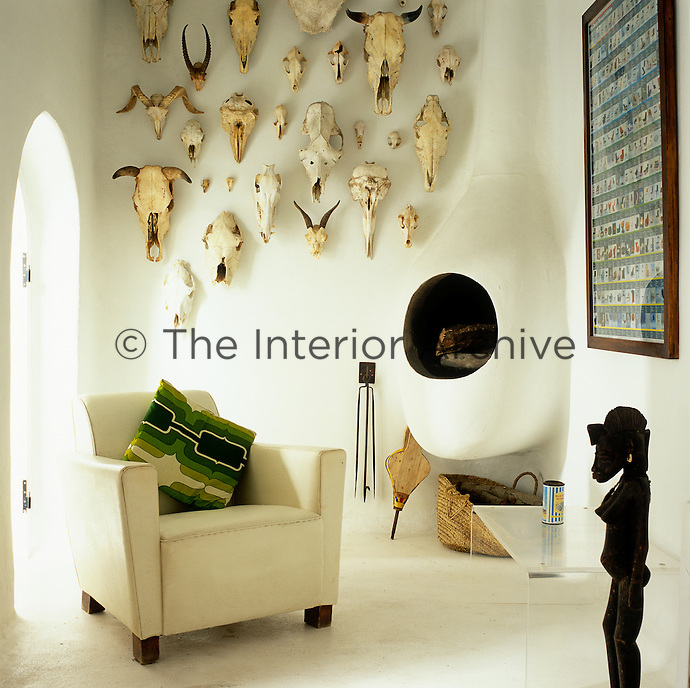 A  collection of animal skulls displayed on the wall of the living room above a traditional Moroccan wood burning stove