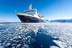 Lindblad Cove, Antarctica