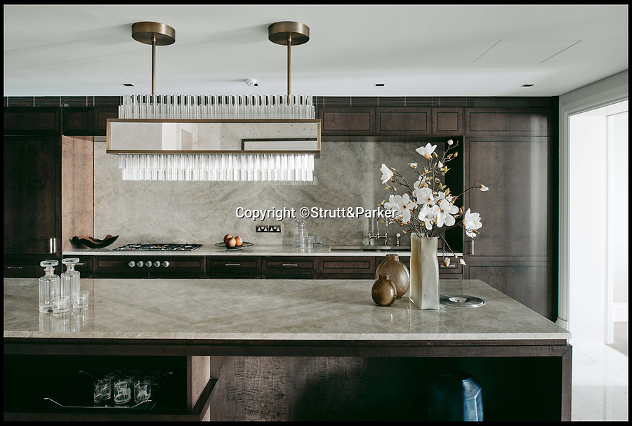 BNPS.co.uk (01202 558833)<br /> Pic:    Strutt&Parker/BNPS<br /> <br /> A luxury flat that is situated next to Buckingham Palace has gone on the the market for £22.5m.<br /> <br /> The four bed apartment is within a listed building overlooking The Mall and is just a few hundred yards from Buckingham Palace.