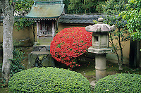 A single red azelea creates a contrasting blaze of color against the stone shrine and lantern of a Zen garden in the Daitokuji compound in Kyoto, Japan.