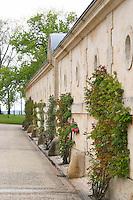 the chai chateau d'yquem sauternes bordeaux france