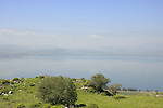 Golan Heights, a view of the Sea of Galilee from Susita, site of ancient Hippos