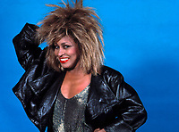 Tina Turner<br />