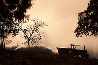 Unai_MG, Brasil...Maquina preparando a terra para o plantio em Unai, Minas Gerais...Machine preparing the soil for planting in Unai, Minas Gerais...Foto: LEO DRUMOND / NITRO