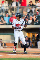 Miles Gordon (23) of the Billings Mustangs shows bunt during the game against the Missoula Osprey at Dehler Park on August 21, 2017 in Billings, Montana.  The Osprey defeated the Mustangs 10-4.  (Brian Westerholt/Four Seam Images)