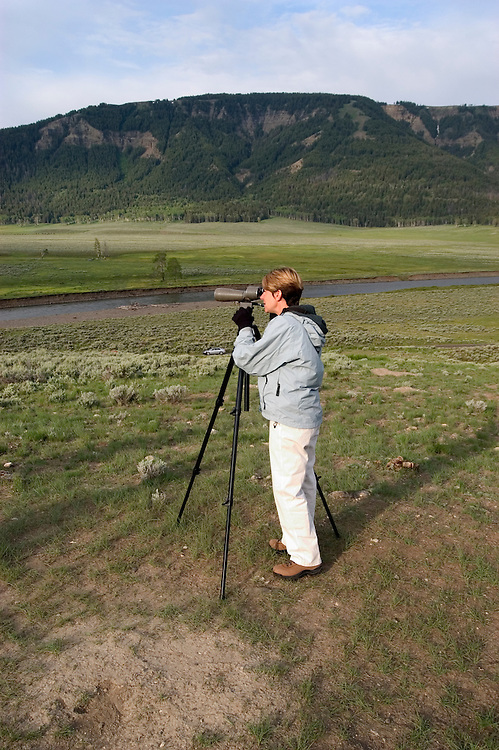 WY: Wyoming; Yellowstone National Park,.Wolf spotting in the Lamar Valley..Wolf biologist Shauna Baron..Photo #: yellow1621.Photo copyright Lee Foster, 510/549-2202, lee@fostertravel.com, www.fostertravel.com..