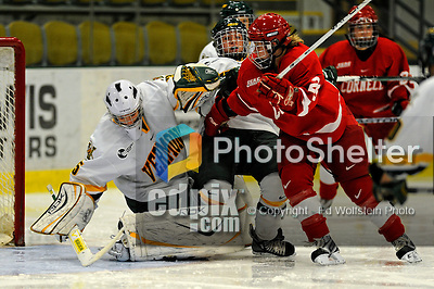 25 October 2008: University of Vermont Catamount goaltender Kristen Olychuck, a Junior from Kelowna, B.C., makes a save in the second period against the Cornell University Big Red at Gutterson Fieldhouse, in Burlington, Vermont. The Big Red defeated the Catamounts 5-1 to sweep their 2-game series in Vermont...Mandatory Photo Credit: Ed Wolfstein Photo