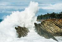Surf, Shore Acres State Park, Oregon