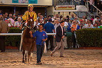 HALLANDALE BEACH, FL - FEBRUARY 04: Jockey Joel Rosario and Irish War Cry after winning the Holy Bull Stakes (G2) at Gulfstream Park. (Photo by Arron Haggart/Eclipse Sportswire/Getty Images)