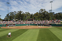 STANFORD, CA - April 3, 2011:  The stands are full of fans during Stanford's 2-0 loss to Arizona at Stanford, California on April 3, 2011.