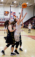Westside Eagle Observer/RANDY MOLL<br /> Gentry senior Ariel Nix shoots for two against West Fork during play at Gentry High School on Dec. 3.