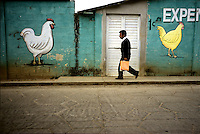 A man passes by painted chickens on the outskirts of San Cristobal, Mexico.
