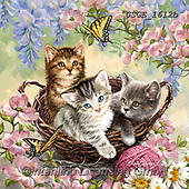 Dona Gelsinger, REALISTIC ANIMALS, REALISTISCHE TIERE, ANIMALES REALISTICOS,cats,butterfly,butterflies, paintings+++++,USGE1612B,#a#, EVERYDAY