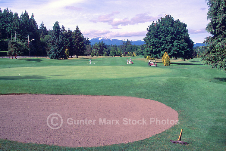 "Golfing on Golf Course at Qualicum Beach, BC, ""Oceanside Region"", Vancouver Island, British Columbia, Canada"