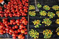 BURKINA FASO, Provinz Poni, Gaoua, market, vegetables like chillies, tomatos / Markt, Verkauf Gemuese, Tomate, Chillies