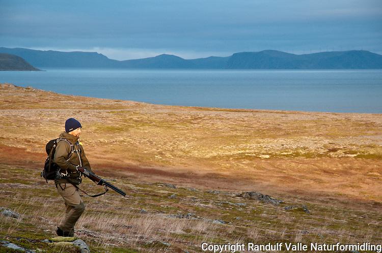 Støkkjeger på Rolvsøy i Finnmark. Havøysund med vindmøller i bakgrunnen. ---- Hunter on Rolvsøy in Finnmark.
