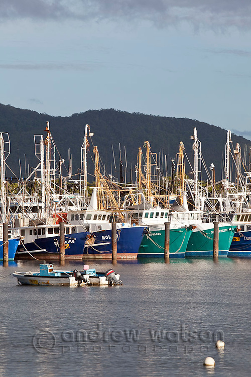 Fishing trawler base at Portsmith.  Cairns, Queensland, Australia
