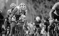 77th Flèche Wallonne 2013..Tim Wellens (BEL)