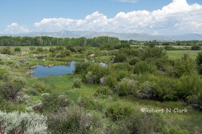 Silver Creek Preserve