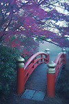 Arched red bridge in a Japanese garden, misty autumn scenery in Kyoto, Japan