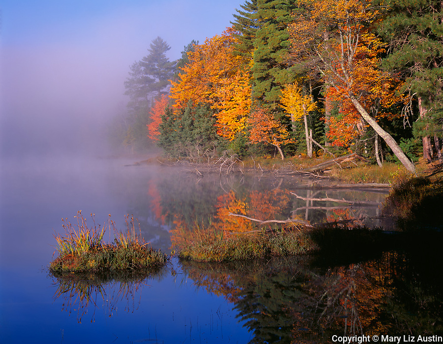 Vilas County, WI<br /> Clearing fog and morning sun lighting the autumn foliage of the deciduous trees on the shoreline of Little Bass Lake in North Highland American Legion State Forest