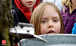 PLYMOUTH CT. 08 March 2014-030814SV02-Sadie Wilson, 5, of Terryville watches sap fall from a tap during The Plymouth Maple Festival in Plymouth Saturday.<br /> Steven Valenti Republican-American