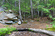 Site of the abandoned Bemis Granite Quarry along the Sawyer River in Harts Location, New Hampshire USA. Dr. Samuel Bemis quarried granite from this site, which he owned at the time, during the 1860s to build Notchland, a granite mansion in Hart's Location. A pile of granite can be seen on the left.