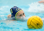 Stanford CA - February 2, 2014 Stanford Women's Water Polo Invitational @ Avery Aquatic Center.  Cal vs. Michigan.