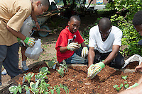 Building Bridges to the Outdoors youth gardening program in Brook Park Bronx
