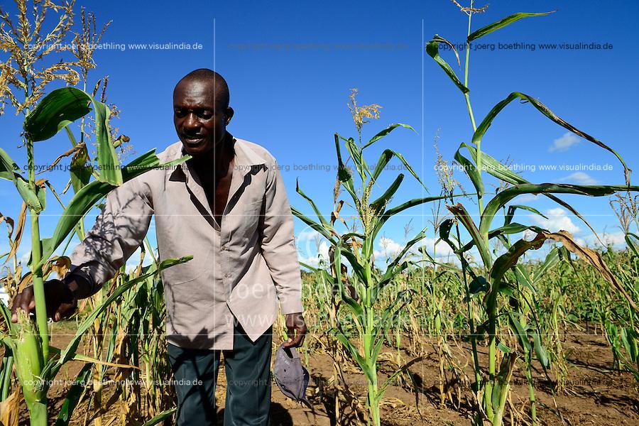 Zambia Chiawa, farmer in maize field which are attacked often by wild animals from the Lower Zambezi National Park / SAMBIA Chiawa, Doerfer im Game Reserve Area des Lower Zambezi Nationalpark, die Dorfbewohner und ihre Felder werden staendig von Wildtieren wie Elefanten, Nilpferden etc attackiert, Farmer im Maisfeld