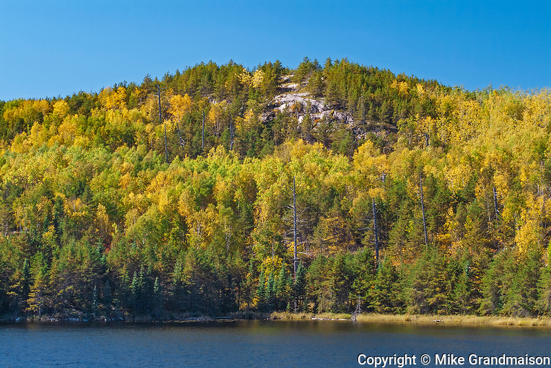 Autumn colors at Tower Lake<br />